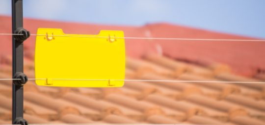 electric-fense-image
